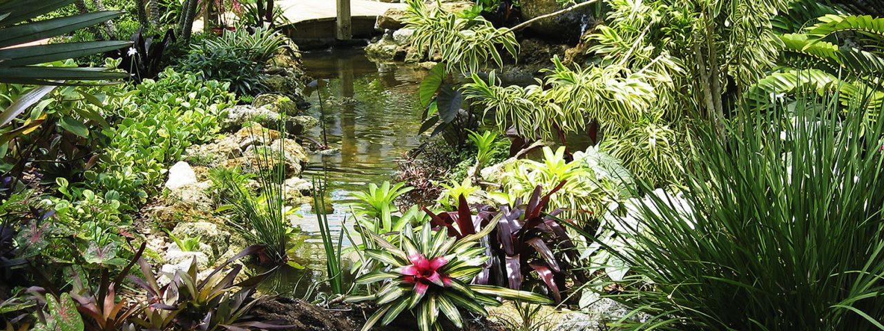 Lucas Lagoons Sarasota Garden Club Remodel